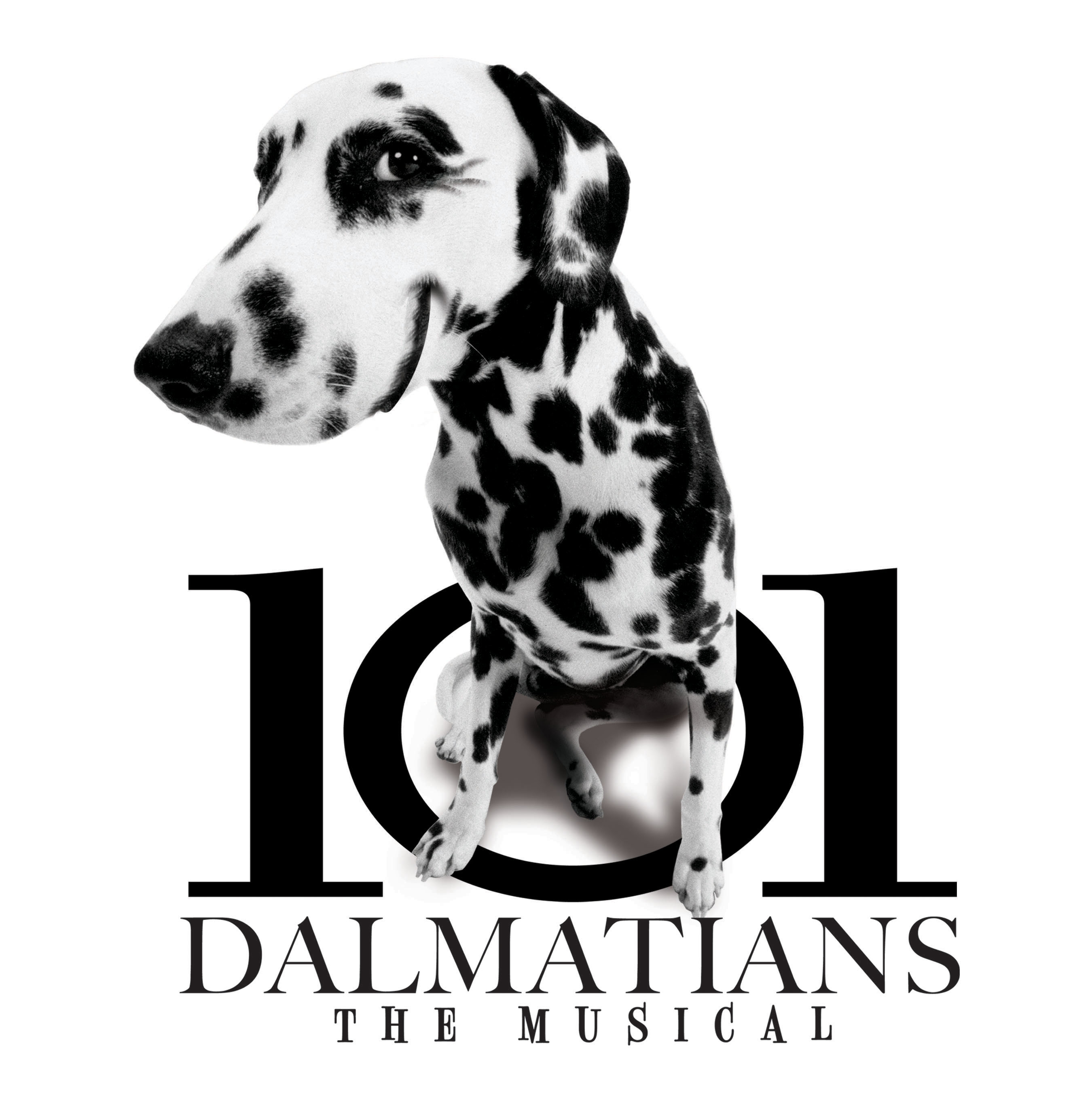 Disneys 101 Dalmations  The Musical Childrens Theatre